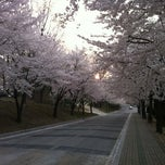 Photo taken at KAIST (한국과학기술원) by Tamama on 4/16/2012