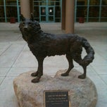 Photo taken at Desert Mountain High School by Phil A. on 2/16/2012