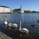 Photo taken at Tjörnin by Jonathan G. on 6/3/2012