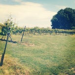 Photo taken at Starview Vineyards by Nicole B. on 4/24/2012