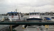Newport Landing Cruises