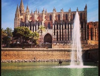 Cover Photo for baena ana's map collection, Palma