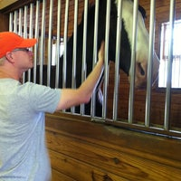 Photo taken at Express Clydesdales Ranch by Denise P. on 5/26/2012