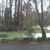 Photo taken at Magnolia Plantation & Gardens by Rodney B. on 1/21/2012