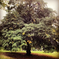 Photo taken at Fort Greene Park by Chad K. on 10/7/2012