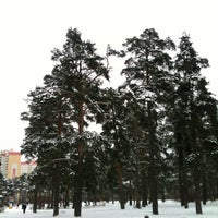 Photo taken at Салтыковский лесопарк by Andrey B. on 1/8/2013