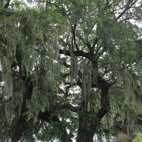 Photo taken at Magnolia Plantation & Gardens by Gloria S. on 6/21/2013