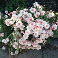 Photo taken at Flowercraft Garden Center by Geoff P. on 7/19/2014