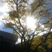 Photo taken at Utah State University by Nate A. on 10/27/2014