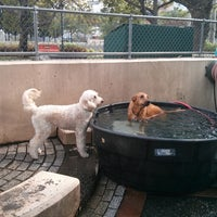 Photo taken at Chelsea Waterside Park Dog Run by Albert W. on 6/30/2013