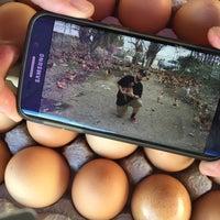 Photo taken at West LA Farmers Market by Suzy R. on 8/17/2015