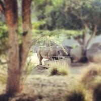 Photo taken at Safari Tram by Javier M. on 11/28/2012