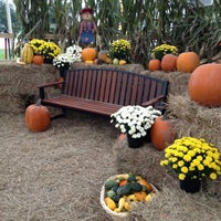 Photo taken at Pumpkin Patch @ The Markets at St Johns Town Center by EastCoast L. on 10/8/2012