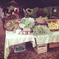 Photo taken at Hattie Carthan Community Garden by Summer B. on 7/13/2013