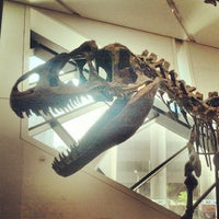 Photo taken at Royal Ontario Museum by Russell's T. on 7/2/2013