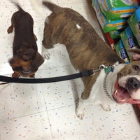 Photo taken at Petco by Kristin N. on 10/6/2012