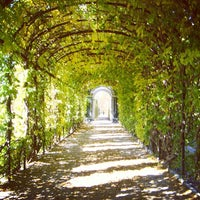 Photo taken at Schonbrunn Palace by Aik S. on 1/10/2013