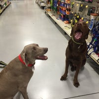 Photo taken at PetSmart by Mike P. on 2/21/2016