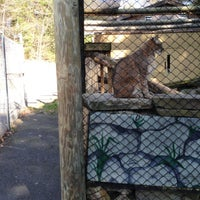 Photo taken at Binghamton Zoo at Ross Park by Necia D. on 4/26/2013