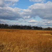 Photo taken at Marshlands Conservancy by Piper on 11/29/2013