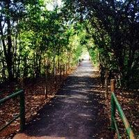 Photo taken at Lago do Parque de Águas Claras by Max M. on 9/21/2013