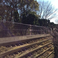 Photo taken at 松戸中央公園 by Takuya N. on 12/31/2013