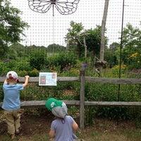 Photo taken at Mass Audubon Felix Neck Wildlife Sanctuary by /\ㅌ¥J T. on 7/15/2014