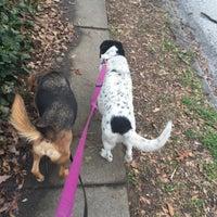 Photo taken at Oakhurst Dog Park by Julie W. on 3/14/2015