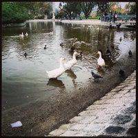 Photo taken at Parque Centenario by Luis G. on 5/19/2013