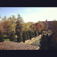 Photo taken at Meridian Hill Park by Timur T. on 11/4/2012