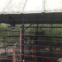Photo taken at Bear Hollow Wildlife Trail by Julie K. on 10/14/2013