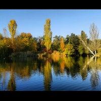 Photo taken at Парк Гагарина by Vera G. on 10/11/2013