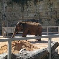 Photo taken at San Antonio Zoo by Babie 2. on 10/24/2012
