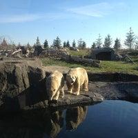Photo taken at Columbus Zoo & Aquarium by Eric H. on 11/26/2012