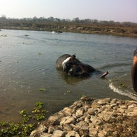 Photo taken at Chitwan Jungle Wildlife Camp by To-to on 1/23/2013