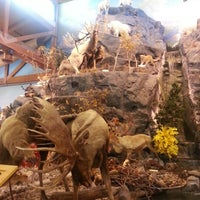 Photo taken at Cabela's by Mahmoud H. on 3/3/2013