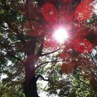 Photo taken at Ashbridge's Bay Park by Erica L. on 6/20/2013