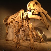 Photo taken at Denver Museum of Nature and Science by Eric G. on 10/14/2012