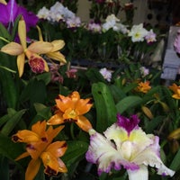 Photo taken at Siam Orchid Center by Khunkiwi J. on 3/2/2015