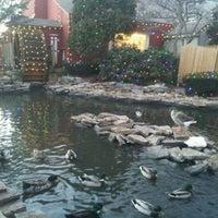 Photo taken at Olde Mystic Village by Cera C. on 11/26/2012