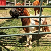 Photo taken at Ryerss Farm for Aged Equines by Matthew John M. on 8/14/2015