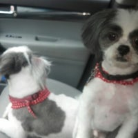 Photo taken at Loving Touch Pet Salon by Mike P. on 1/10/2013