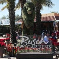 Photo taken at Busch Gardens Tampa by Allan M. on 11/23/2012