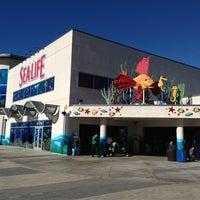 Photo taken at SEA LIFE Aquarium by JediLarry B. on 12/28/2012