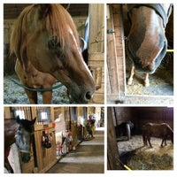 Photo taken at Ryerss Farm for Aged Equines by Mitch R. on 8/31/2014