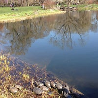 Photo taken at Central Park – Turtle Pond by Michael G. on 4/15/2013