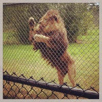 Photo taken at Greater Vancouver Zoo by Pavel B. on 8/3/2013
