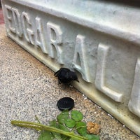 Photo taken at Grave of Edgar Allan Poe by Em K. on 8/1/2013