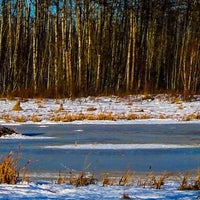 Photo taken at Elk Island National Park by Tracy L. on 1/27/2014