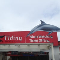 Photo taken at Elding Whale Watching by Maximilian M. on 7/14/2013